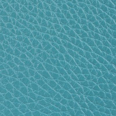 Alce azzurro 40