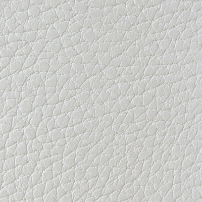 Alce bianco 101