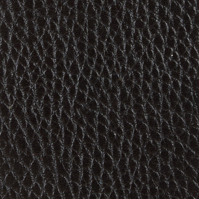 Alce nero 91