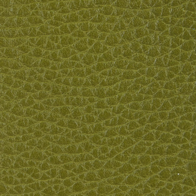 Alce verde acido 77