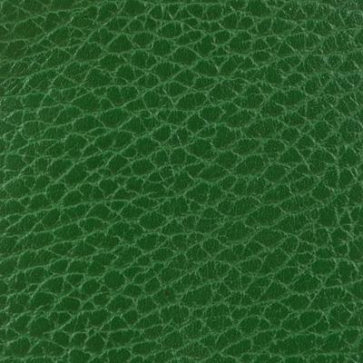Alce verde prato 81
